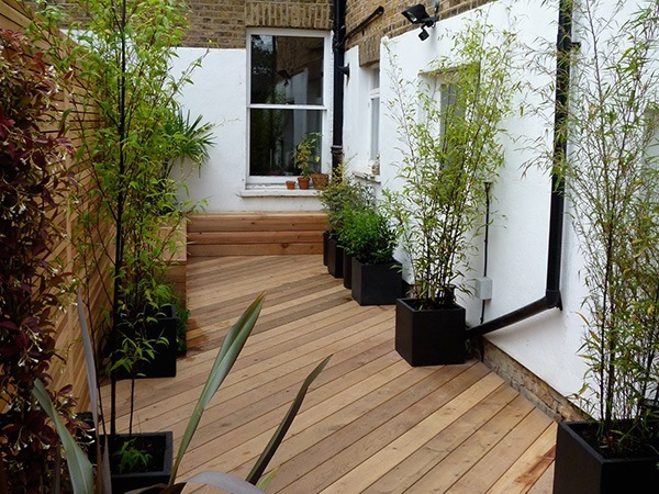 How to make a low maintenance  garden with planters