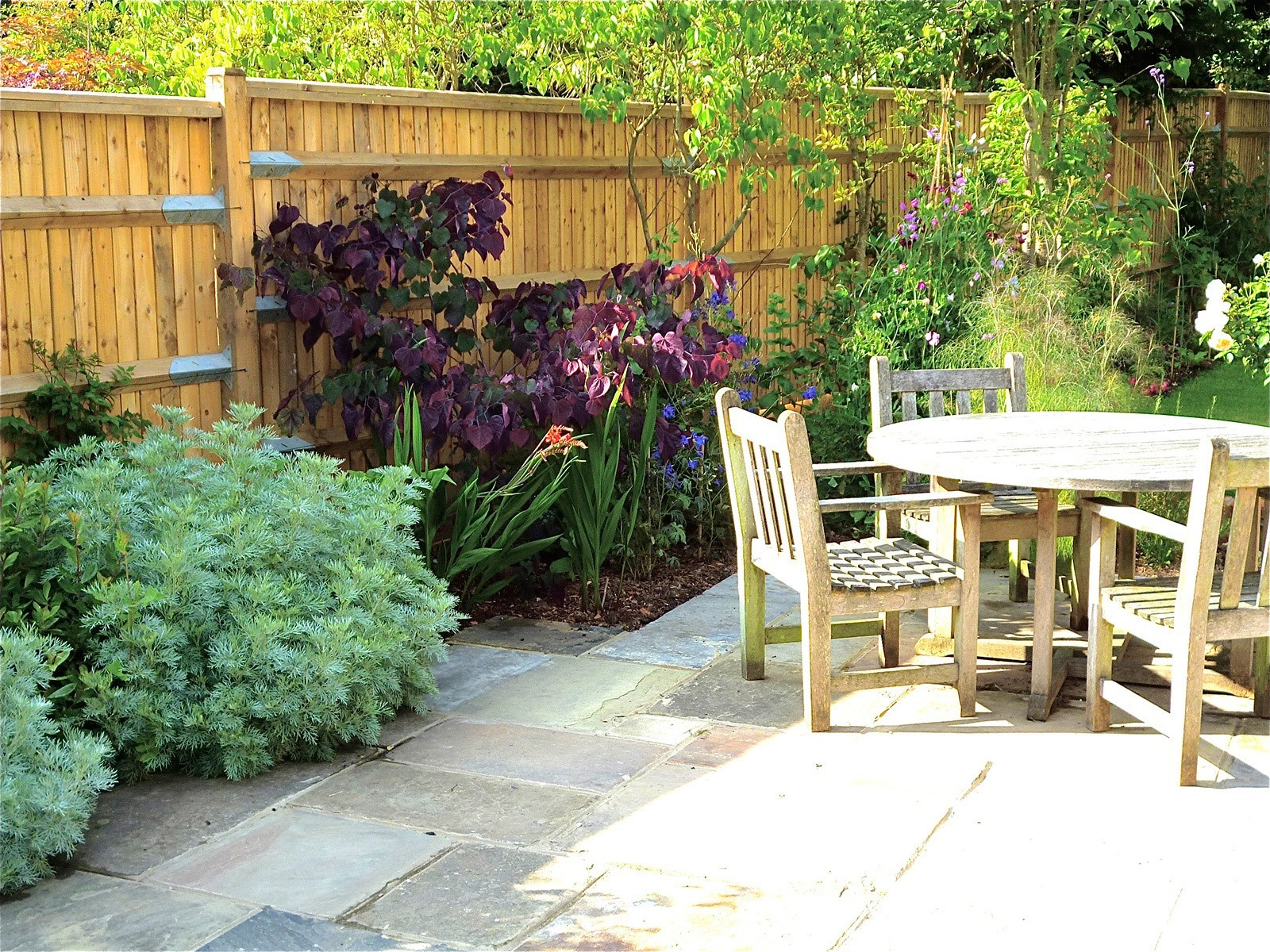 Part of the large Yorkstone patio with vigorous new planting.