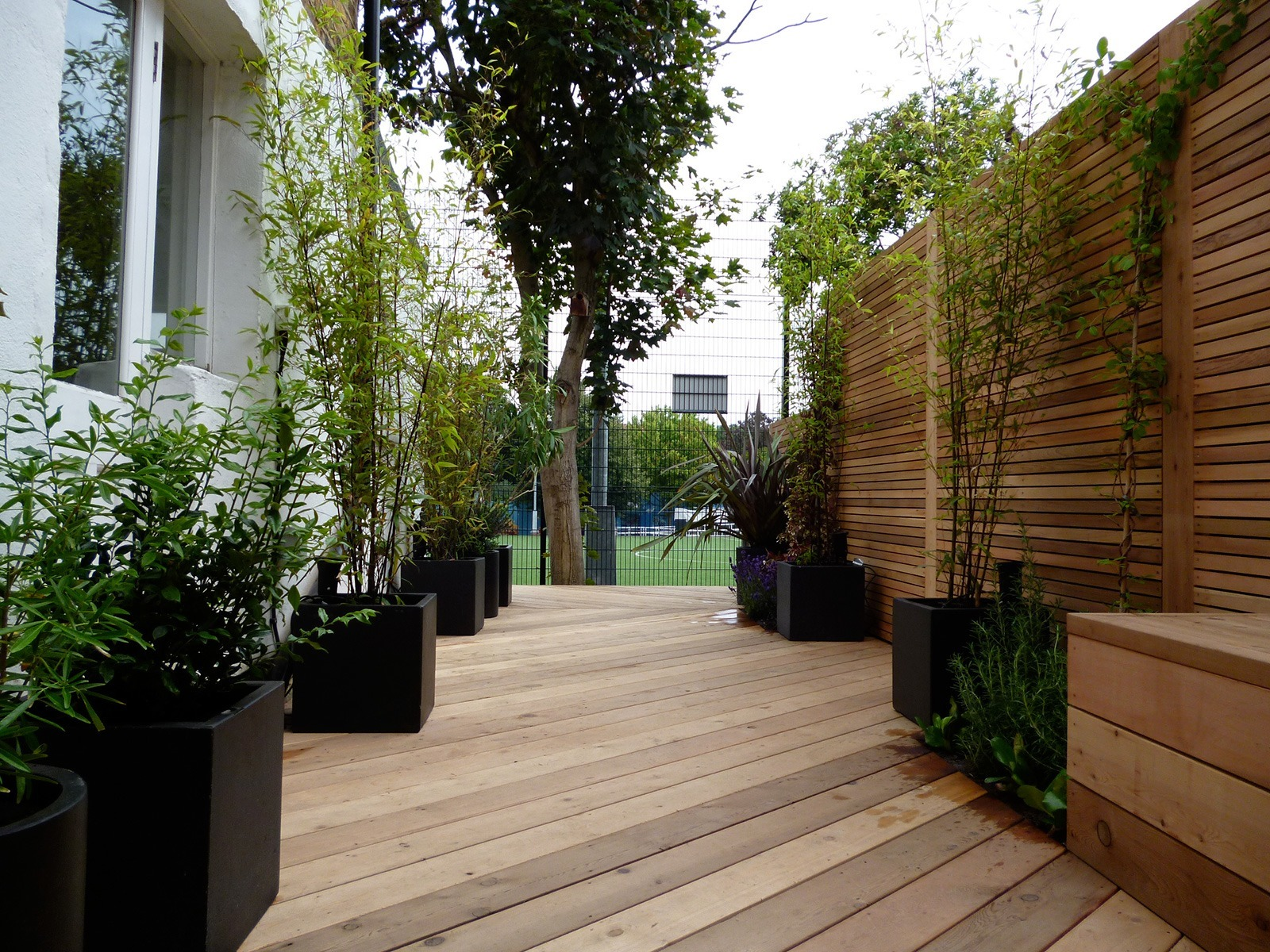 The garden feels suddenly larger. The smart black planters contribute to the minimalist effect.