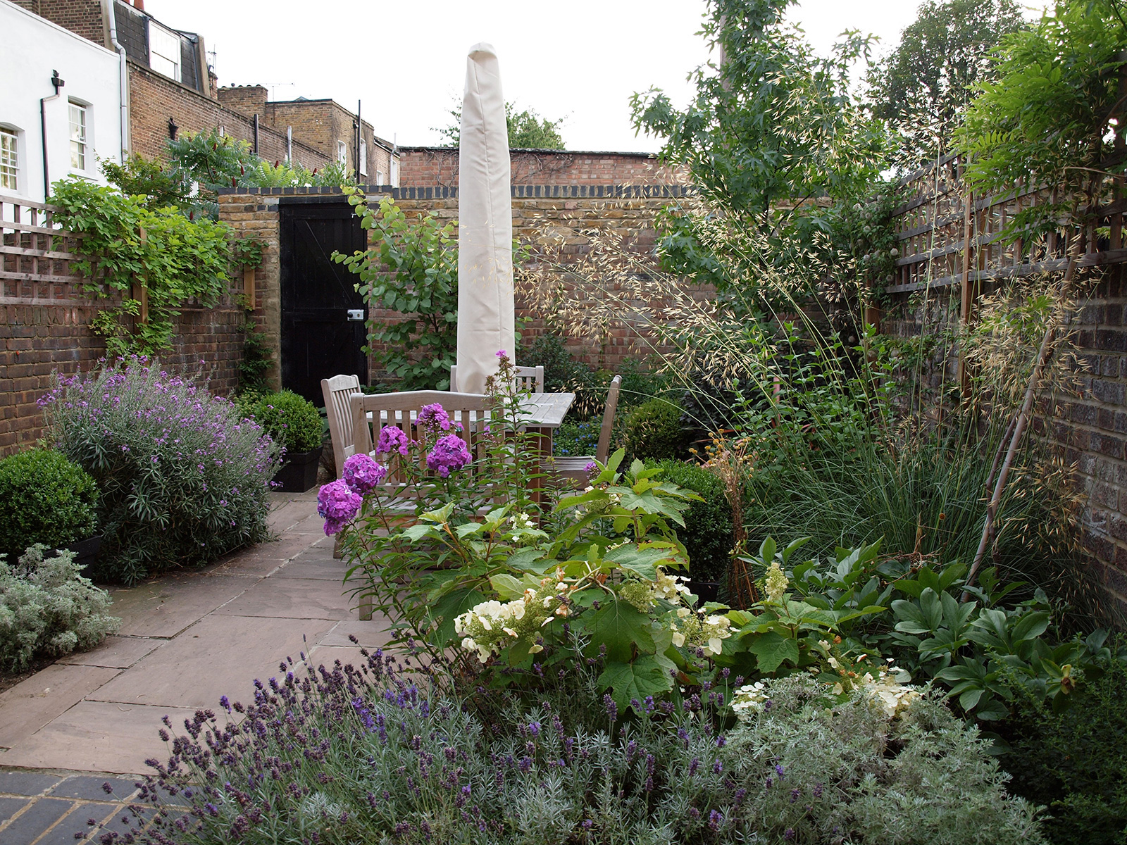 This sunny town garden was photographed in the first season after planting.