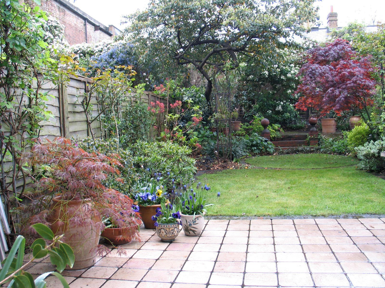 A private space combining patio and lawn and featuring low-maintenance all -year-round planting.