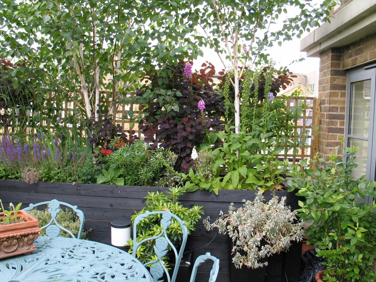 A wide range of perennials, shrubs and trees is planted here in large, black, wooden planters.